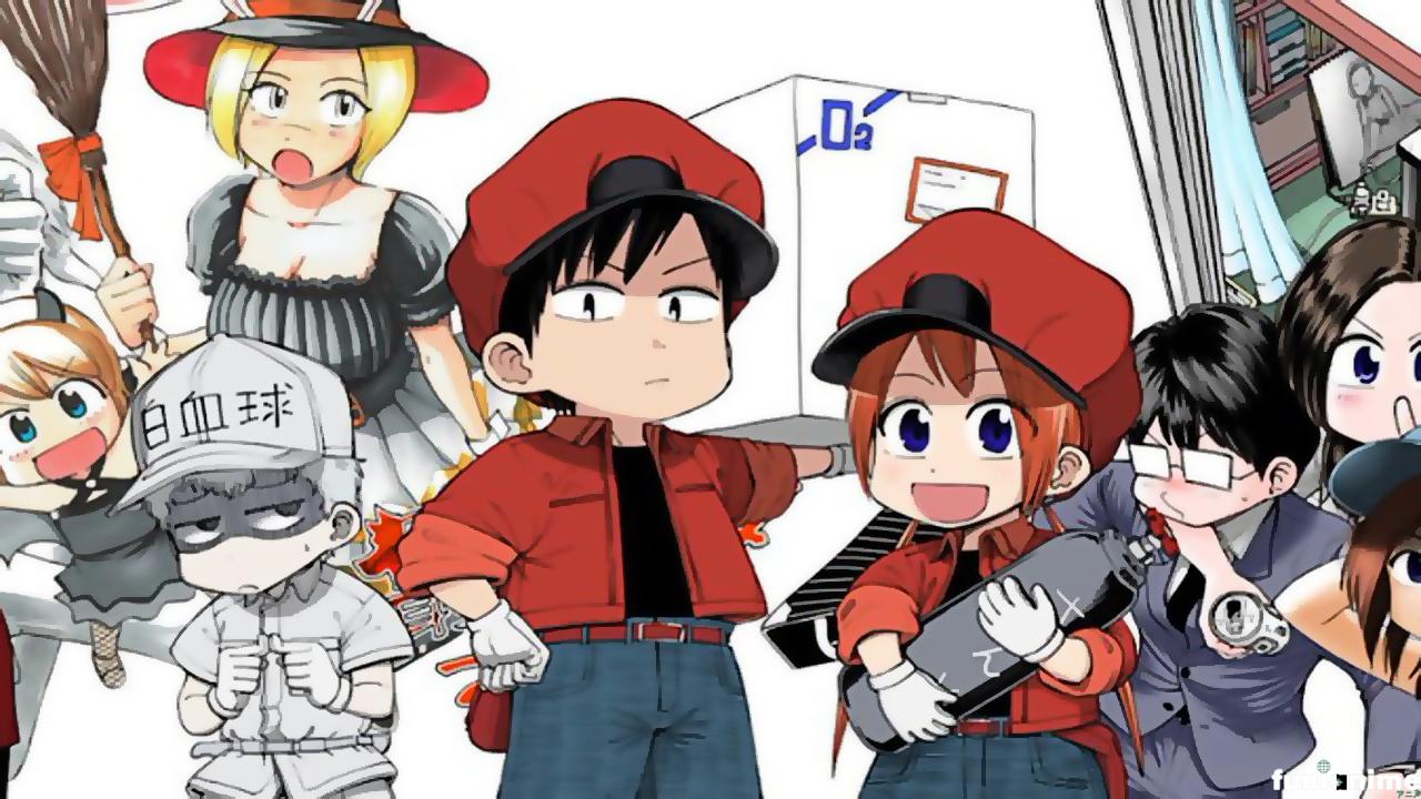 Cells at Work! Baby: Manga entra en Hiatus